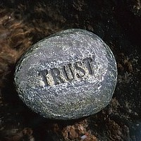 Your website should build trust with your customers